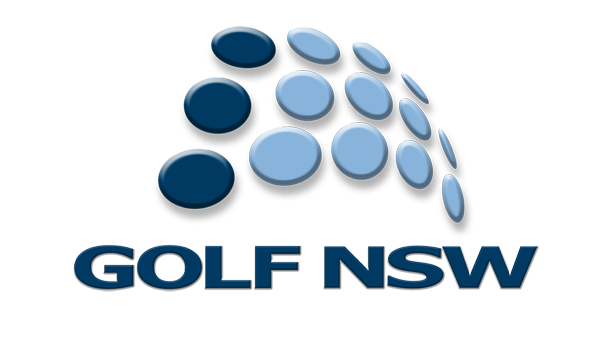 Doey Flies The Concord Flag at The NSW Amateur